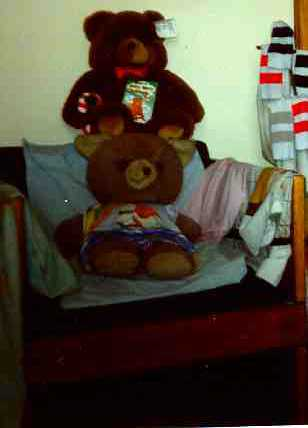 Wogi the Teddy Bear on a Chair with an anonymous bear above him